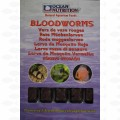 BLOODWORM FROZEN